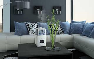 Как правильно выбрать увлажнитель воздуха для квартиры?