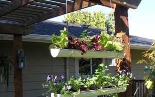 Подвесной сад в квартире
